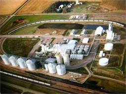 Conservation biomass demonstration shows potential - Ethanol Producer Magazine | Trendy Ecofriendly Mag | Scoop.it