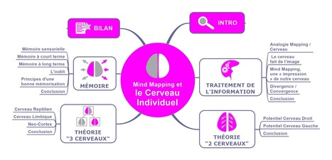 [e-Book] Notre cerveau et le Mind Mapping | Medic'All Maps | Scoop.it