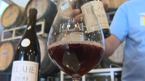 Making 'Green' Wine Takes Horse Power, Pedals and Paddles - NBC News | Pinot Post | Scoop.it
