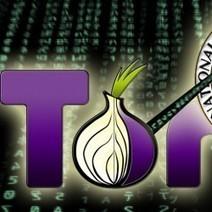 #Sécurité: #Tor : Saisie de serveurs pour neutralisation en vue | #Security #InfoSec #CyberSecurity #Sécurité #CyberSécurité #CyberDefence & #DevOps #DevSecOps | Scoop.it
