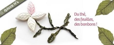 Bonbons au thé vert sencha - Voyage des sens | Escale Sensorielle...une boutique pleine de sens | Scoop.it