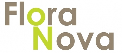 Se lancer en franchise avec le groupe Flora Nova | Actualité de la Franchise | Scoop.it