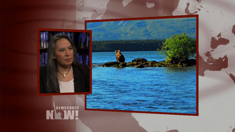 Sexual Violence and Natural Resource Pillaging Top Hardships Facing Alaskan Natives | Coffee Party Feminists | Scoop.it