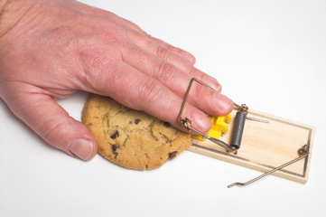 Reducing caloric intake delays nerve cell loss | KurzweilAI | Longevity science | Scoop.it