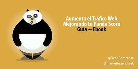Google Panda a Examen ¿Pasará la prueba tu página web? | Santiago Sanz Lastra | Scoop.it