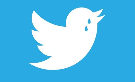 Twitter : 317 millions d'utilisateurs, 103 millions de pertes et suppression de 9 pourcents des effectifs - Blog du Modérateur | * LE MIAM MIAM BLOG * et les réseaux sociaux | Scoop.it