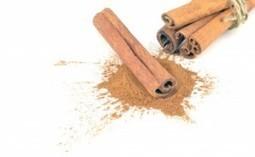 CinnamonForWeightLoss.org   Herbs   Scoop.it