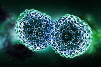 Vaxon completes enrolment in Phase IIb trial of Vx-001 in NSCLC   Therapeutic cancer vaccines   Scoop.it