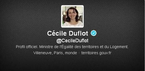 Comment les ministres doivent gérer leur compte Twitter. Et les insultes qu'ils reçoivent | Gaffes au Web | Scoop.it