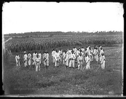 Slavery by Another Name | Abagond | Community Village World History | Scoop.it