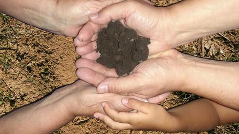 Pétition à Matteo Renzi, Président du Conseil de l'Union Européenne pour préserver les sols.   Chimie verte et agroécologie   Scoop.it