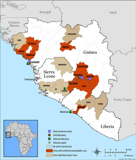 Ebola Immunopathology and the Outbreak in West Africa - The Student Blog | Tools and tips for scientific tinkers and tailors | Scoop.it