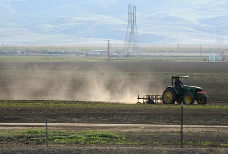 Why California's drought hasn't sent food prices soaring | Agriculture news & innovations | Scoop.it