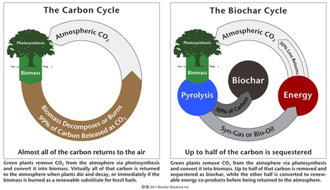 Katerva – Sustainability – Innovation » Biochar Solutions Inc. | Permaculture, Philosophy & a sustainable future | Scoop.it