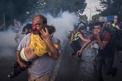 Prix Pulitzer pour les photographes du New York Times, Reuters et The Boston Globe | Actuphoto | Jaclen 's photographie | Scoop.it