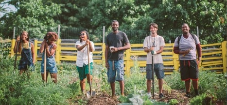 Black Farmers to buy from instead of Whole Foods - | Cultural NFO | Scoop.it