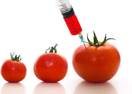 GM Proponents Claim Genetic Engineering Is Just an Extension of Natural Plant Breeding | Food issues | Scoop.it