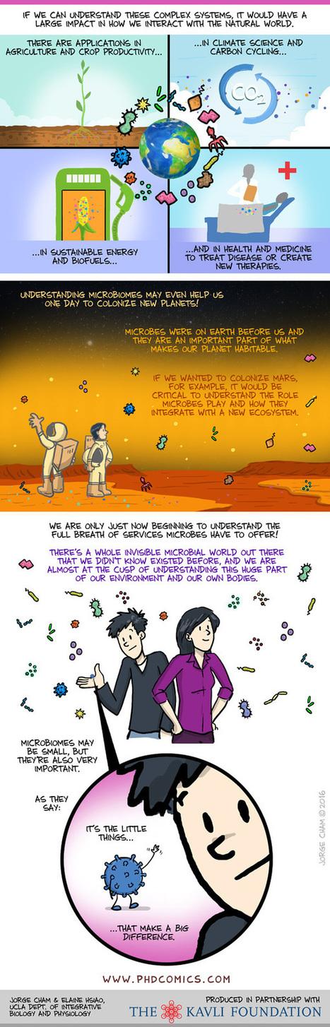 PHD Comics: Microbiomes Explained   Bioinformática   Scoop.it