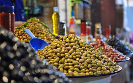 Maroc : un record de 1,42 million de tonnes d'olives cueillies | Nouvelles du Maghreb | Scoop.it