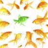 B2B Marketing and Marketing Strategy