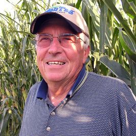 Pest resurgence casts doubts on benefits of modified corn   Food issues   Scoop.it