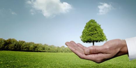 Ces événements environnementaux qui vont marquer 2014 | 694028 | Scoop.it