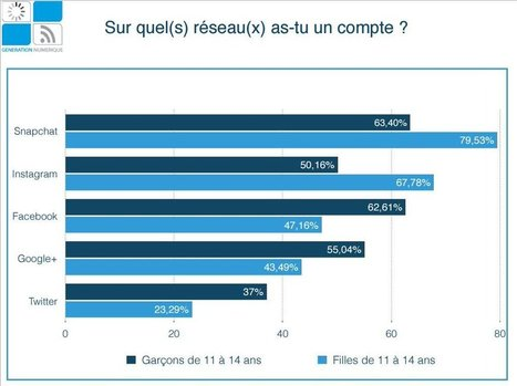 RSLN | Ados et numérique : quelles sont les pratiques en ligne des jeunes Français ? | Sociologie du numérique et Humanité technologique | Scoop.it