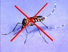 Mẹo hay diệt côn trùng tại nhà | Dịch vụ dọn dẹp Nam Việt | Scoop.it