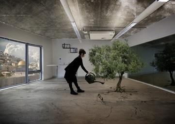 "Nation Estate, a ""vertical solution to Palestinian statehood"" - we make money not art | Cinema Zeal | Scoop.it"