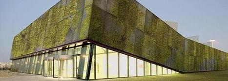 Desarrollan un hormigón biológico para construir fachadas verdes | Agricultura Ecológica | Scoop.it