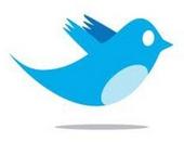 Twitter sigue creciendo rápidamente: ya tiene 288 millones de usuarios activos al mes | Social Media y RRSS | Scoop.it