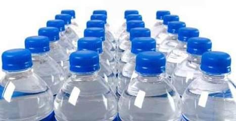¿Hacemos el canelo comprando el agua embotellada? - El Biocultural   La ecocolumna   Scoop.it