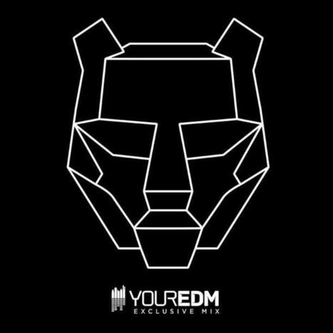 Your EDM Mix with Black Tiger Sex Machine – Volume 16 [Exclusive Interview] - Your EDM | Electronic Music | Scoop.it