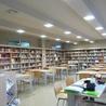 Bibliotecas escolares, promoción de la lectura, formación, redes y entornos profesionales