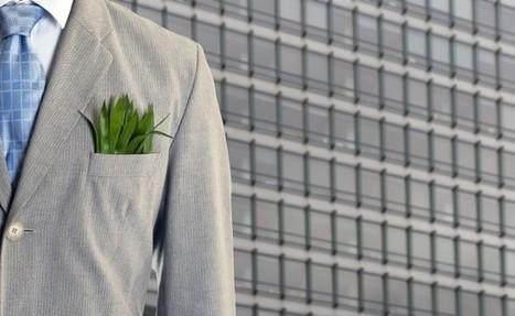 Green economy e crescita, i numeri danno ragione alla sostenibilità | Green economy | Scoop.it