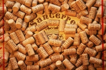 Jefford on Monday: The Sancerre Gauntlet | Vitabella Wine Daily Gossip | Scoop.it