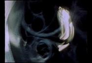 SOUPIRS D'ECUMES (PARTIE III) - Light Cone   3IS : VISUAL CULTURE   Scoop.it