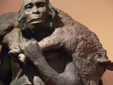 Notre ADN contient des virus néandertaliens ! | Aux origines | Scoop.it