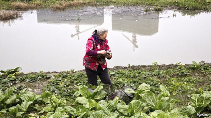 Chinese land reform A world to turn upside down - The Economist | real utopias | Scoop.it