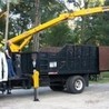 The tree care company in Tallahassee, FL is BB Tree Care LLC