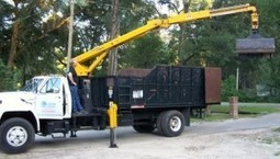 The tree care company in Tallahassee, FL is BB Tree Care LLC | The tree care company in Tallahassee, FL is BB Tree Care LLC | Scoop.it