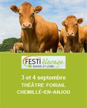 Premières rencontres des grandes cultures bio en novembre | Agriculture bio | Scoop.it