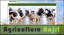 Les Vaches | Les Vaches | Scoop.it