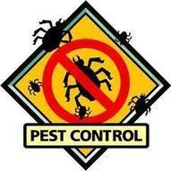 Two Reasons Why Termite Treatment In Casa Grande Is A Must | My Bestfriend When It Comes To Pest Control | Scoop.it