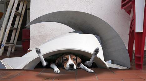 Los bomberos rescatan a un perro atrapado en una caseta diseñada por Santiago Calatrava | Temas varios de Edu | Scoop.it