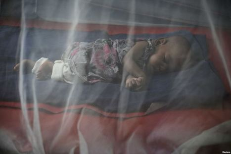 Study: Pregnant Women Not Gaining Access to Malaria Prevention | Malaria and Africa | Scoop.it