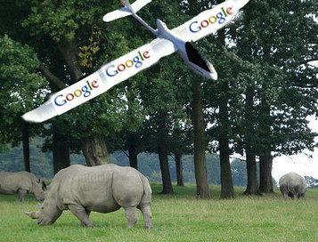 Google-Funded Drones To Hunt Rhino Poachers | Robotique de service | Scoop.it