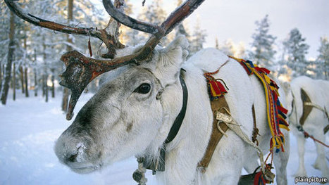 Northern lights - The Nordic countries are reinventing their model of capitalism   Finland   Scoop.it