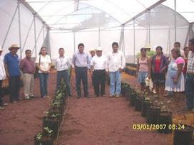UN EJEMPLO MAS DE MUJERES EN LA HIDROPONIA | Cultivos Hidropónicos | Scoop.it