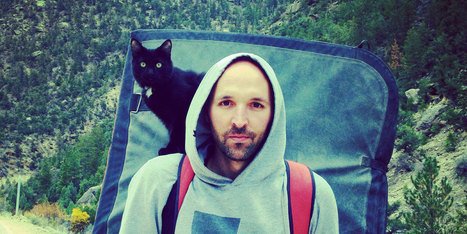 Millie The Adopted Cat Is The Best Climbing Partner Ever | 16s3d: Bestioles, opinions & pétitions | Scoop.it